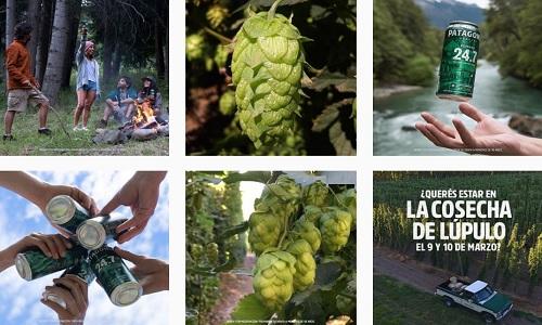 Franquicia Cerveza Patagonia